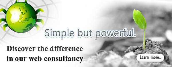 Expert Wordpress Consultancy