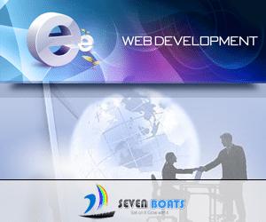 web development, custom software development