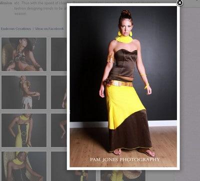 Image Gallery for WordPress Websites 2