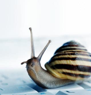 snail - website slowing down