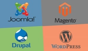 Our development technology partners are Wordpress, Magento, Joomla, Drupal, cPanel, Google Analytics, Google Apps for business, PHP, HTML, CSS & more