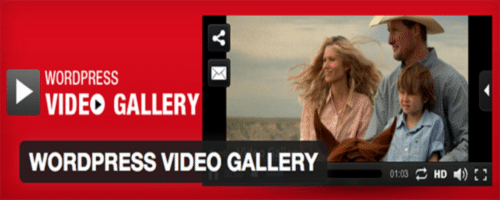 Top 5 Best video gallery for your WordPress sites